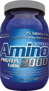 Amino-2000 Inner Armour