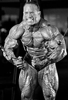 Dave Palumbo Bodybuilder 7 ezr